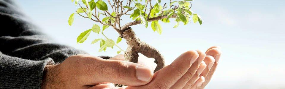 Conseko - ISO 14001 standard - zaštita životne sredine